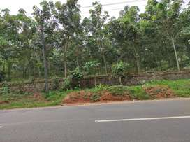 3.1 acre high way front land at vengola,near perumbavoor,pattimattom