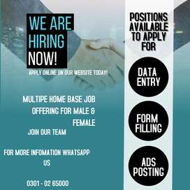 We are providing you home based data entry jobs,