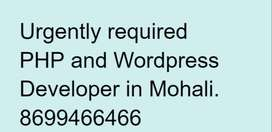 Urgently required PHP and Wordpress Developer in Mohali.