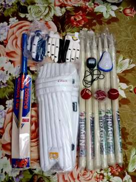 BRAND NEW , UNTOUCHED Cricket kit !  only genuine person No-