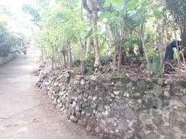 Tanah di turi areal kebun salak
