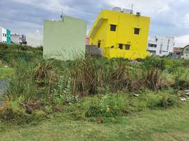 1800 sq ft fully approved land with patta near new collector office
