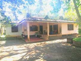 House For Sale In Vaikom. Villa For Sale In Thalayazham, Kottayam.