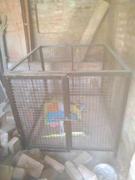 Metal cage for dog