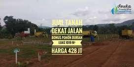 Jual tanah dekat jalan bonus pohon durian