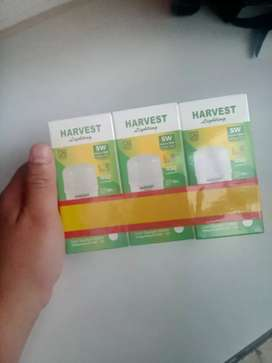 Harvest Lighting 5 watt (3pcs)