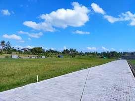 Tanah Kavling Termurah Bisa Kredit dekat ke Munggu & Canggu