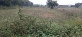 Land for sale in Gokulapuram.