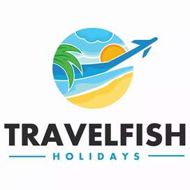 Sales executive for Travel Agency