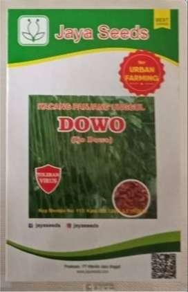 Benih Bibit Kacang Panjang Dowo Jaya Seeds
