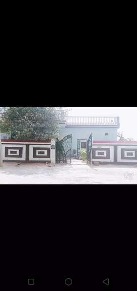 Rairu milawali factory gate