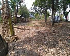 Tanah yang Menguntungkan untuk Investasi dan membuka usaha