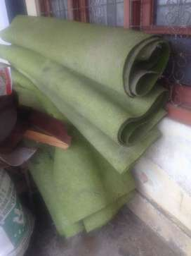 Karpet hijau seperti dimasjid