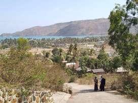Jual Tanah didaerah Kuta Lombok tengah dekat dengan sirkuit Mandalika.