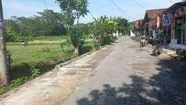 Tanah Bagus diProliman Timur LPMP Kalasan dkt Jalan raya JogjaSolo