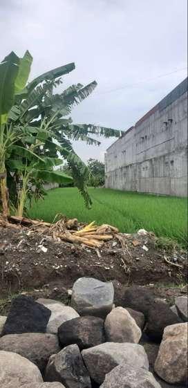 Tanah Murah Pinggir Jalan Aspal cocok Rumah/Kost dkt Malioboro
