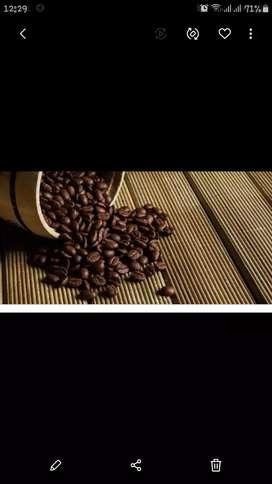 kerjasama buka kedai  kopi dan jual perlengkapan kedai kopi