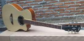 Gitar Akustik Elektrik EQ7545R