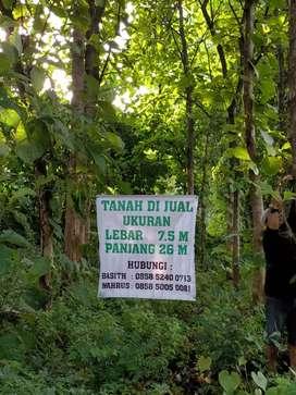 Tanah dijual jalan utama pantura lamongan