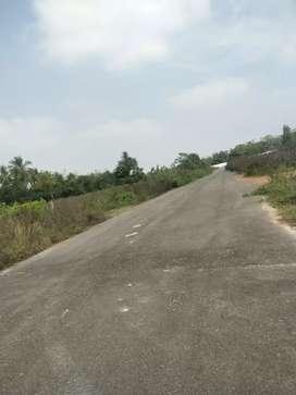 40*60 West Facing Plot in Kuberandasagar near Yelwala