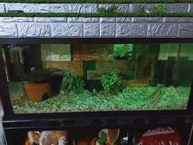 4 feet aquarium for sale with fish without fish