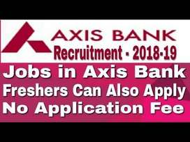 FIELD BOY REQUIRED IN BANKING PROCESS