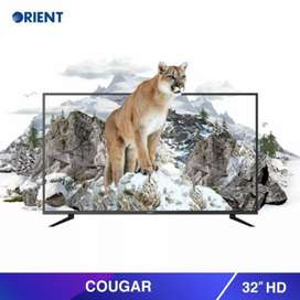 Orient 32 inch led tv (cougar)