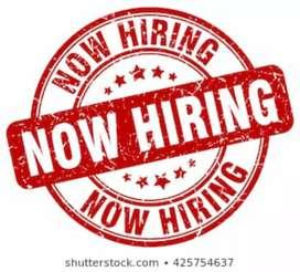 Urgent hiring 2019 job vacancy