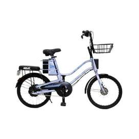 Sepeda Listrik Selis EOI