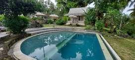 For Sale Villa Di Tegallalang View Cantik Padi Terasering