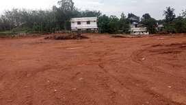 2.5 Acres of Land in Ervely, Chottanikkara