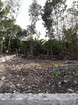 Jual Tanah Murah Pinggir Jl Provinsi cuma masuk 30 meter