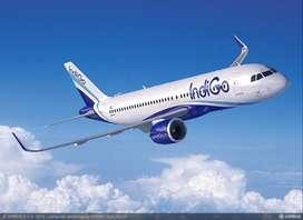 Recruitment in airport Job urgent Hiring All staff for indigo airlines