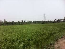Land for sale direct from owner 35 Bhigha