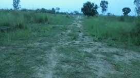 Chakeri tehsil Sadar ploting land 1 bigha