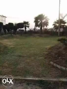 100 Yard Plot For Sale In Best Location