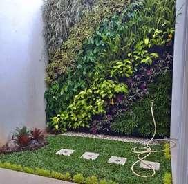 Taman vertikal - vertikal garden