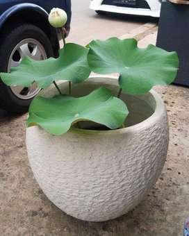 Pot Taman Cantik dan Unik Handmade Terazzo