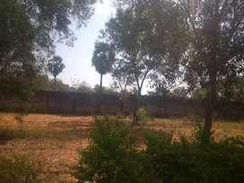 Farm Land for sale at Aroma garden and Universal farm Nalla Farm House