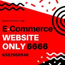 eCommerce website Design Only 6666