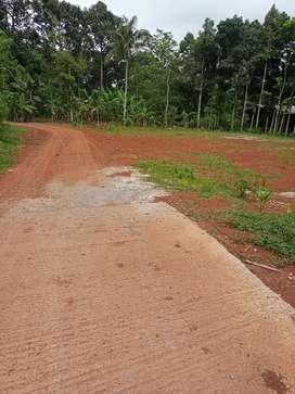 Tanah dekat jalan raya gunung Pati 650 meter Semarang kota