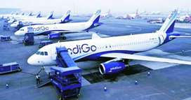 CONGRATULATIONS! GREAT OPPORTUNITY TO WORK WITH INDIGO AIRLINES