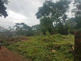 45 cent house plot at Kundamthadam Cherupuzha