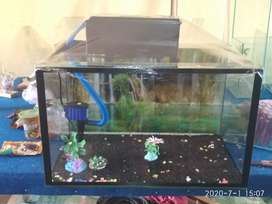 Dijual aquarium baru full set