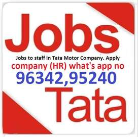 Jobs in submit your Resume company (HR) what's app no 96342,95240