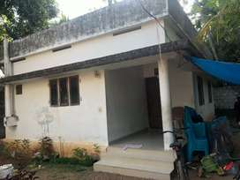 Plote for sale at muringoor with house