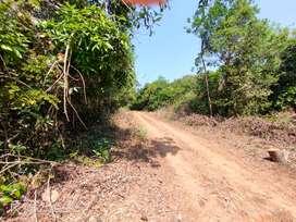 Land for sale - 3.4 acres- Hiriyadka, Udupi