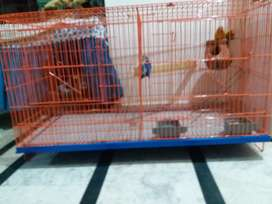 Dual portion cage for sale