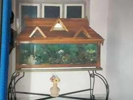 I wanna sell Aquarium