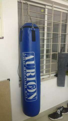 Aurion Punching Bag